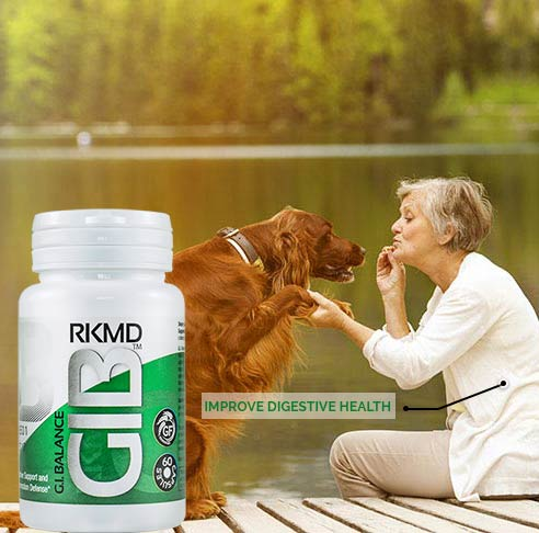 Improve Digestive health with GIB™